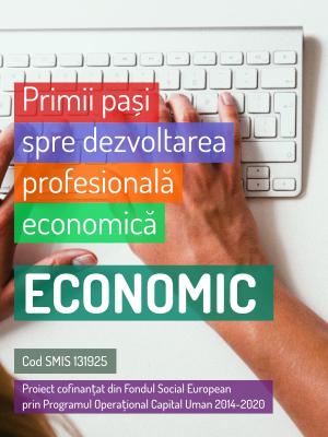Primii pași spre dezvoltarea profesională economică