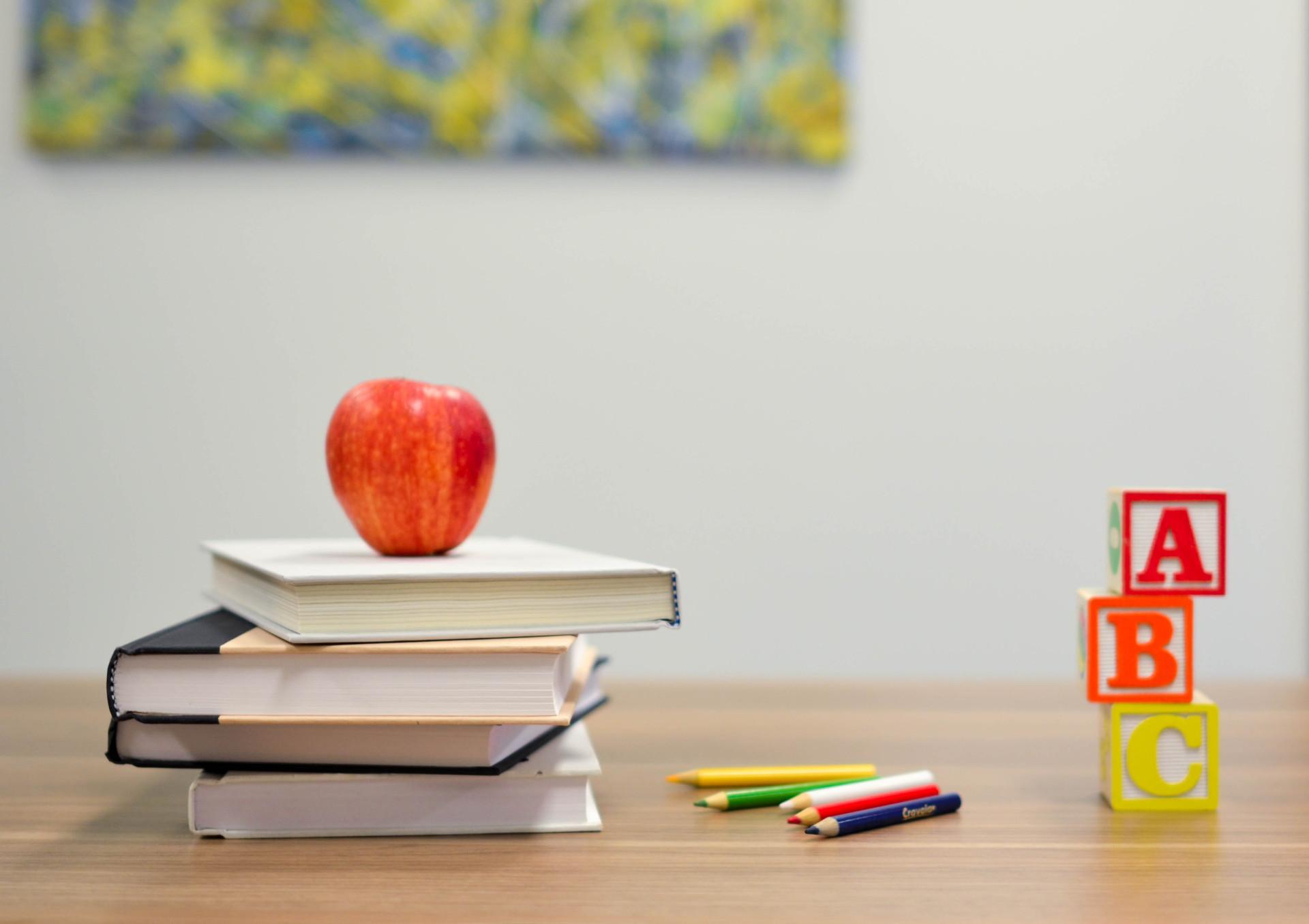 Asociația ROMFRA organizează cursuri de formare pentru cadrele didactice, cu acordarea de credite profesionale transferabile