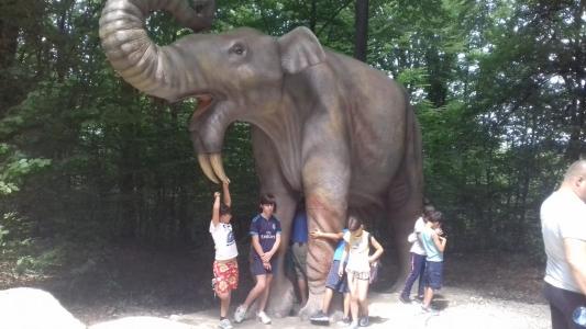 Excursie Dino Parc