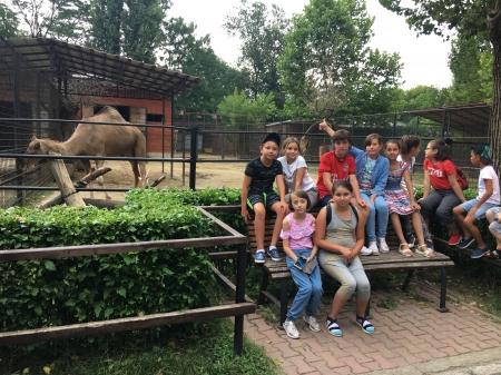 Excursie Zoo București 2019